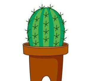 cactus_01-300x275 شعر کودکانه کاکتوس سبز