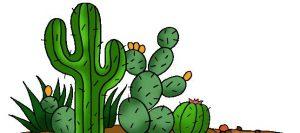 mexican-cactus-300x133 شعر کودکانه کاکتوس سبز