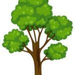 فواید درخت و چرا باید درخت بکاریم-عکس کارتونی