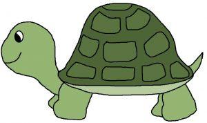 Turtle-clip-art02-300x178 لاکو لاک ندارد - قصه ای برای خردسالان و کودکان