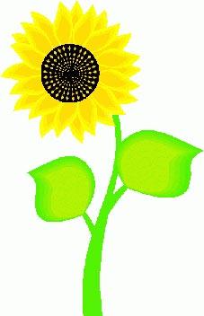 قصه صوتی گل و پرنده - کلیپ ارت گل آفتابگردان