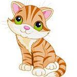 یه گربه ی ملوسی داشتم-عکس کارتونی گربه