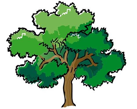 قصه درخت آرزوها - کلیپ ارت درخن