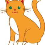 قصه کودکانه گربه