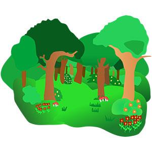 آشنایی با جنگل برای کودکان