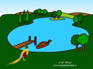 Pheasant-lake02-300x225 قصه صوتی قرقاول خوش شانس - داستان گویا برای کودکان