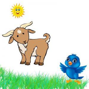 bird-goat-clipart-300x300 دانلود کتاب زور کی بیشتره با فرمت pdf