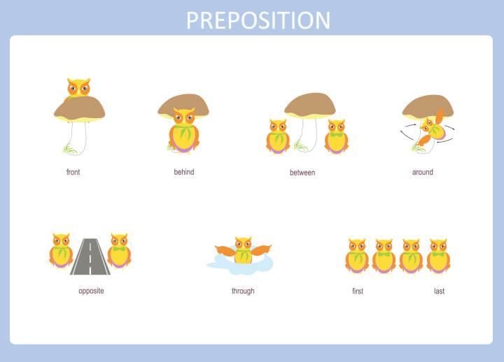 Preposition 15 برگه رایگان انگلیسی برای آموزش و تمرین کودکان