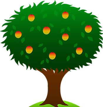 شعر کودکانه درخت و درختکاری