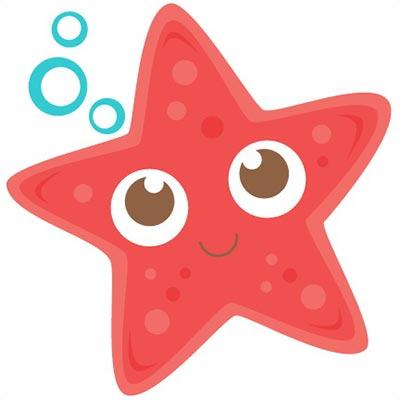 بزرگترین ستاره دریایی