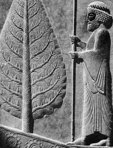 Persepolis03-230x300 نمادهای تخت جمشید را بیشتر بشناسیم - گوپَت، هما و سرو