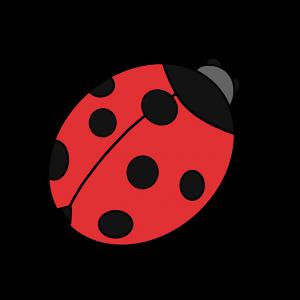 Ladybug-10-300x300 چگونه یک کفشدوزک زیبا نقاشی کنیم - آموزش گام به گام