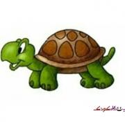 آموزش نقاشی لاک پشت