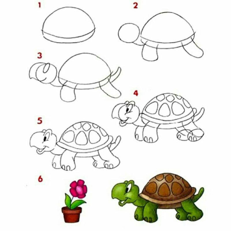 Turtle_drawing1 آموزش نقاشی لاک پشت به روش ساده